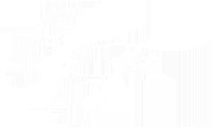 ptlogoblanc